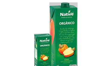 Néctar de Caju Orgânico Native