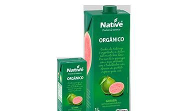 Suco de Goiaba Orgânico Native